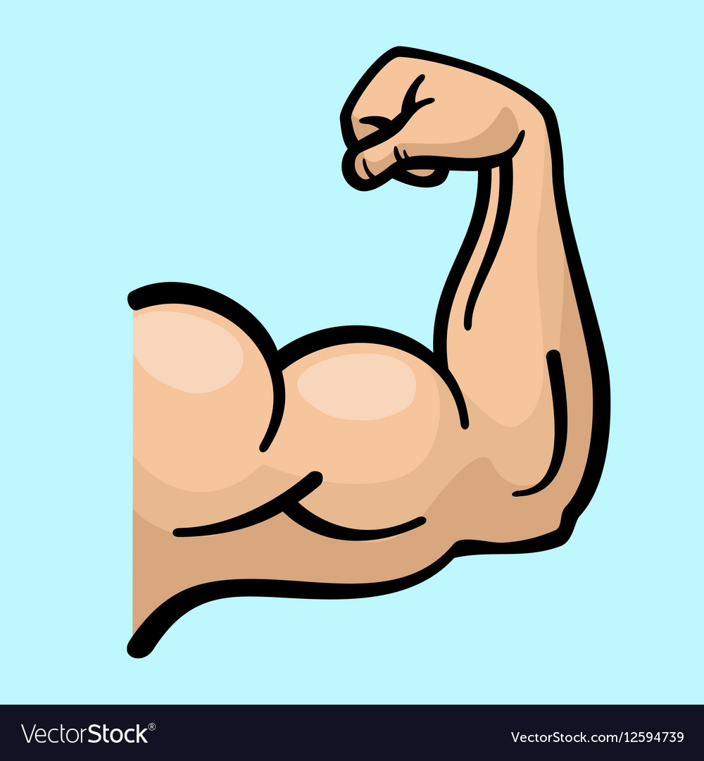 Muscle arms strong bicep icon vector image