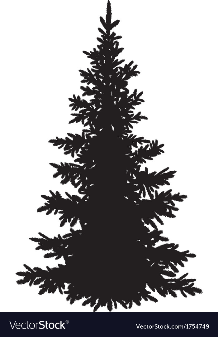 Christmas fir tree silhouette vector image