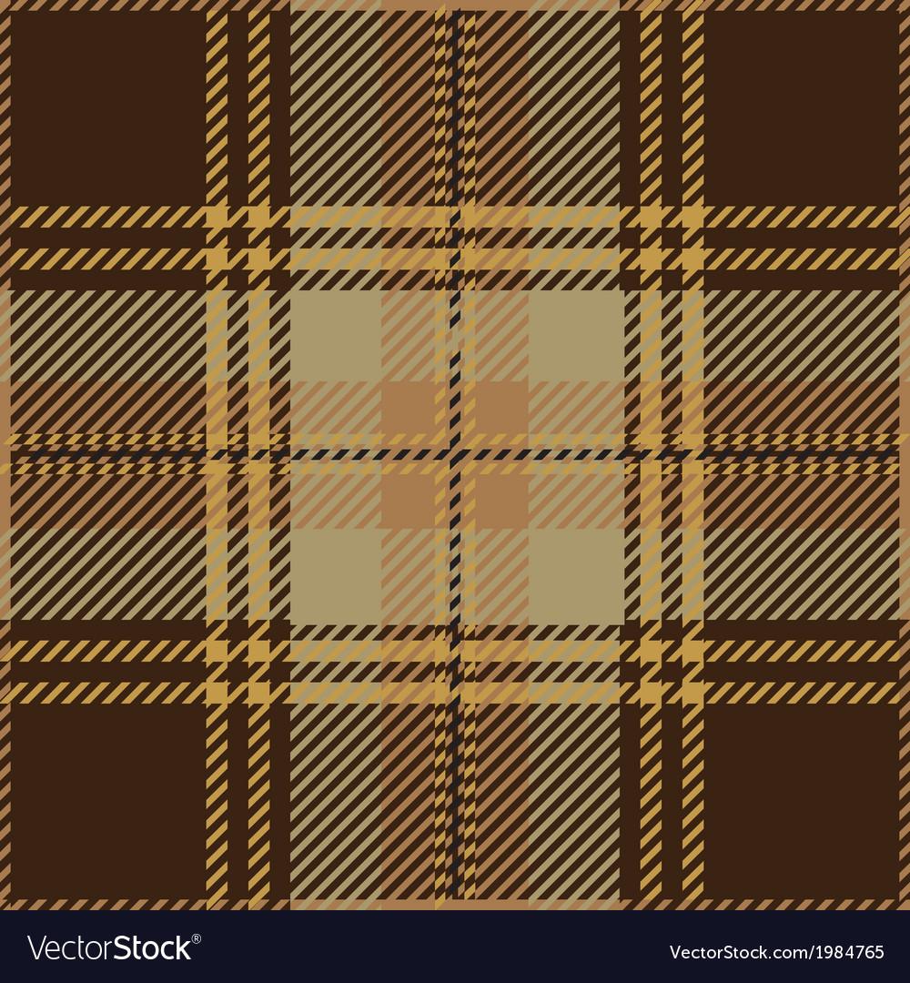 Brown Tartan Pattern vector image