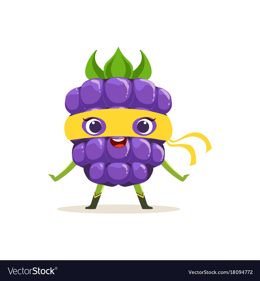 Cartoon character of happy superhero blackberry vector image