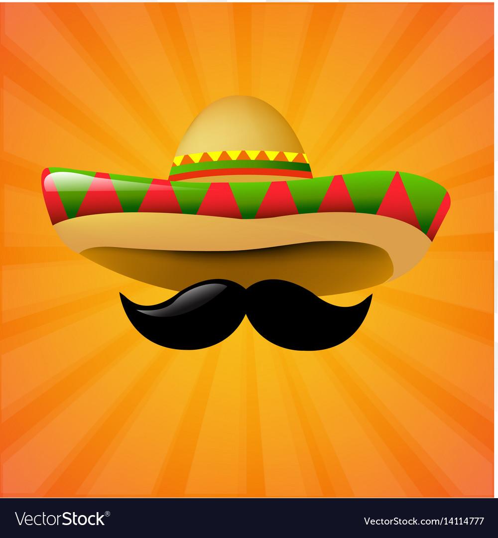 Mexico sombrero vector image