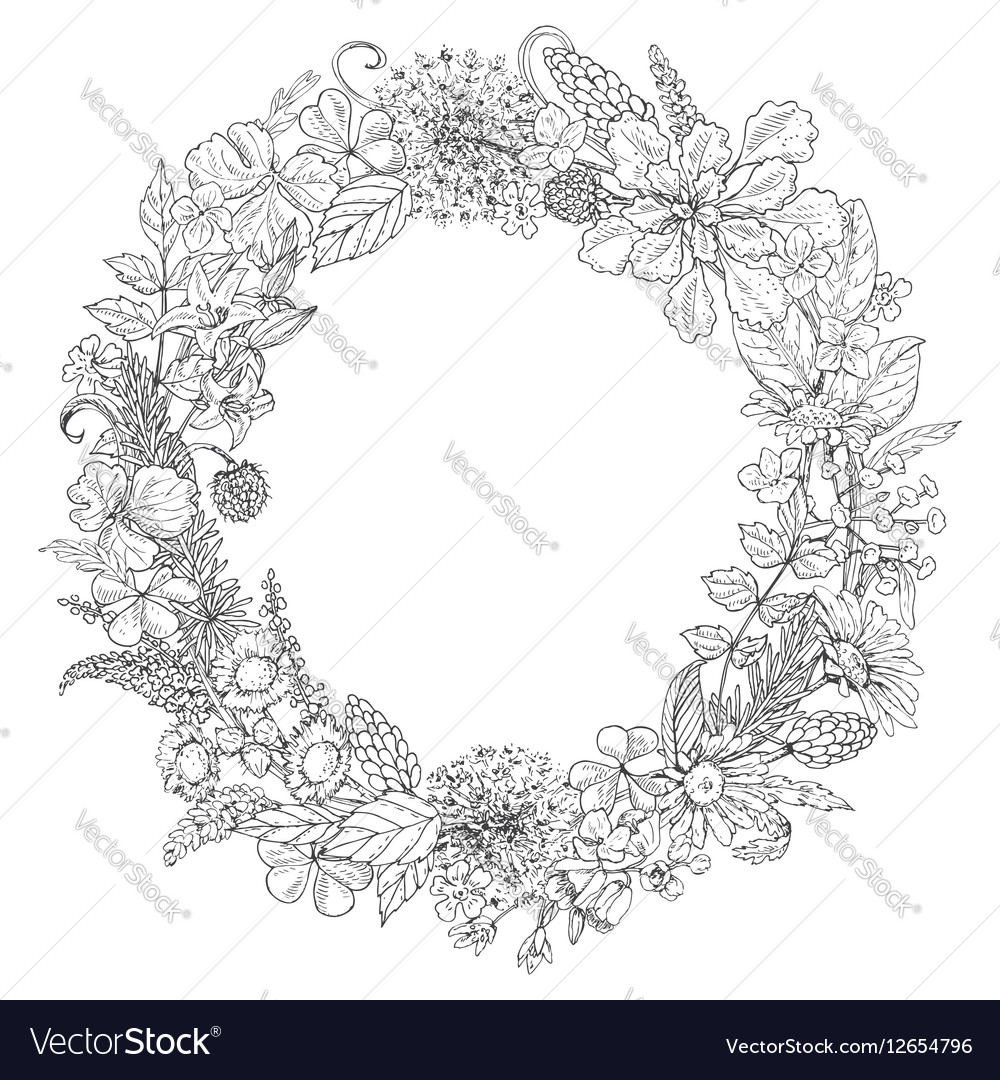 doodle flowers round royalty free vector image