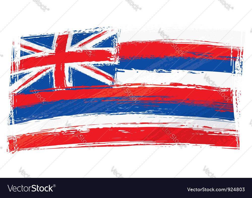 Grunge Hawaii flag Vector Image