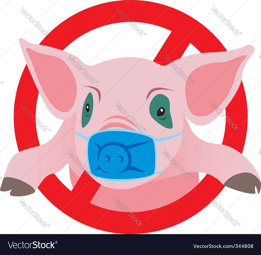 Swine flu vector image