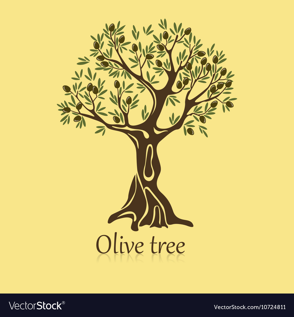 Logo of olive tree with berries on branches vector image