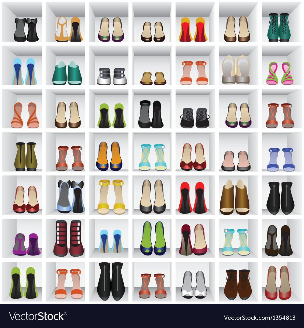 Shoes on shelves of shop vector image