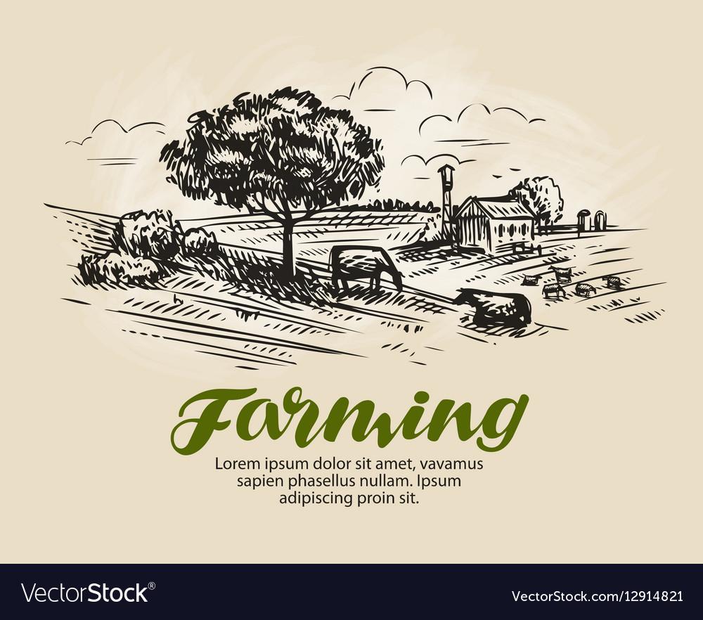 Farm sketch Rural landscape agriculture farming vector image