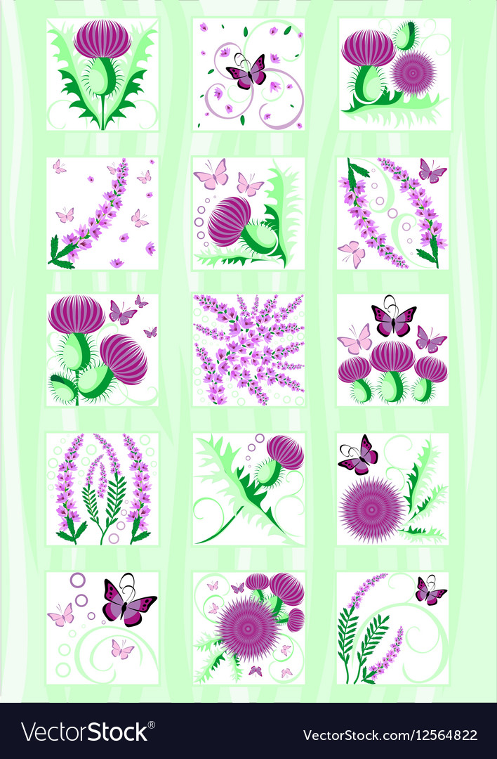 Set of the decorative Scottish flowers thistle and vector image