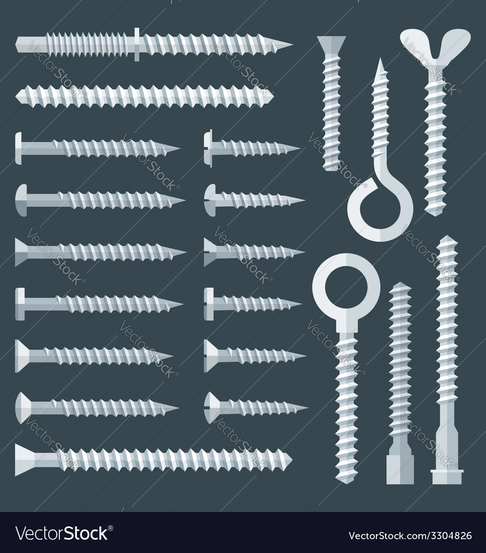 Flat various types screw set vector image