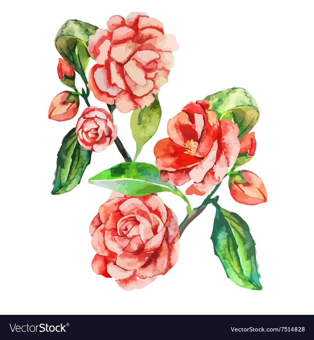 Flowers decorative realistic flower vector image