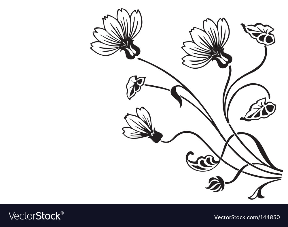 Antique floral ornament engraving vector image