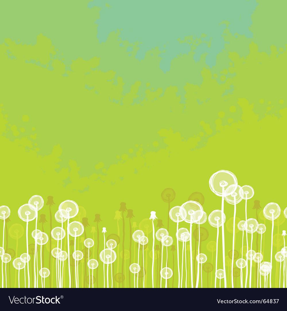Dandelions background vector image