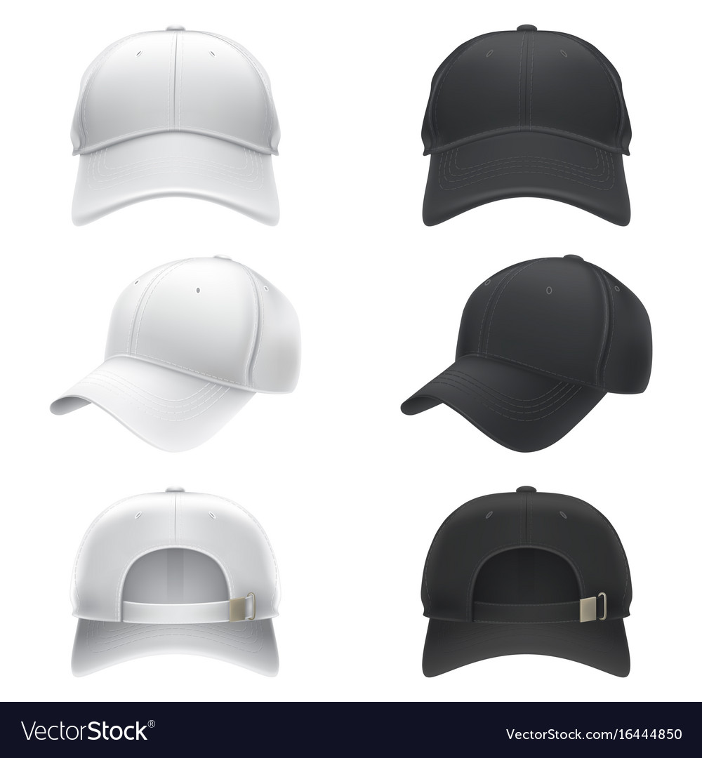 Realistic of a white and black vector image