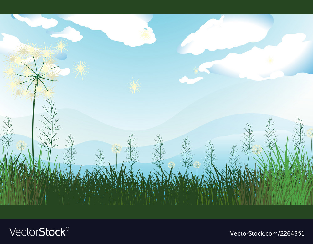 Tall grasses under the blue sky vector image