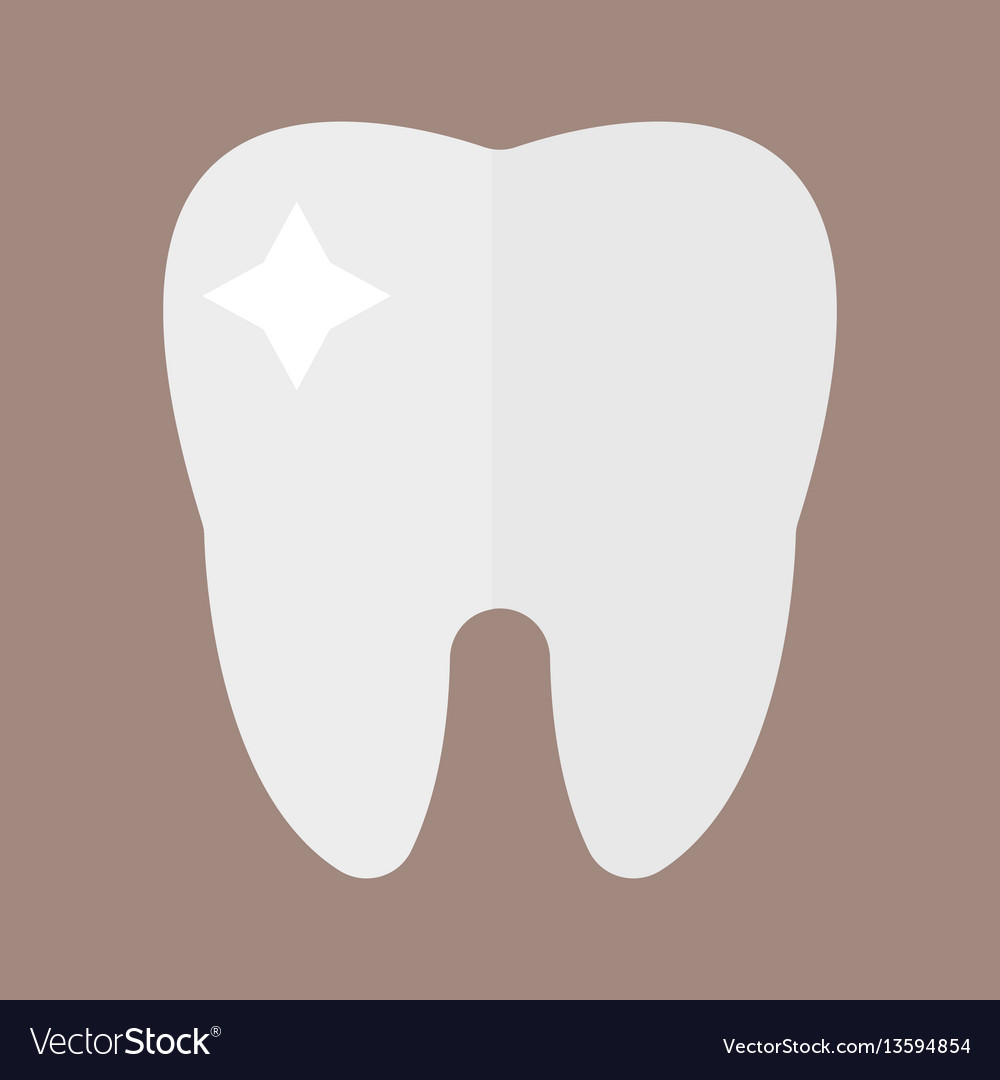 Flat health care dentist tooth icon research vector image
