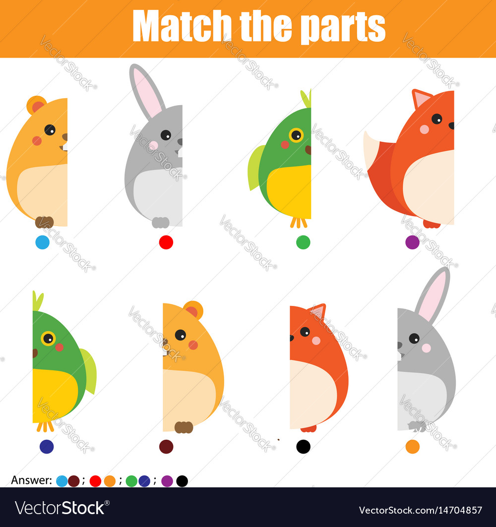 Matching children educational game kids activity vector image