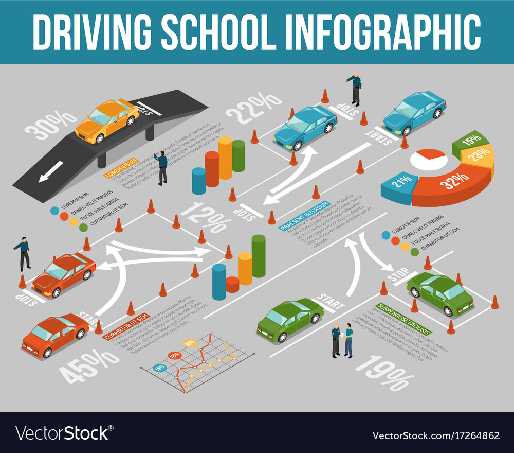 Driving school infographics vector image