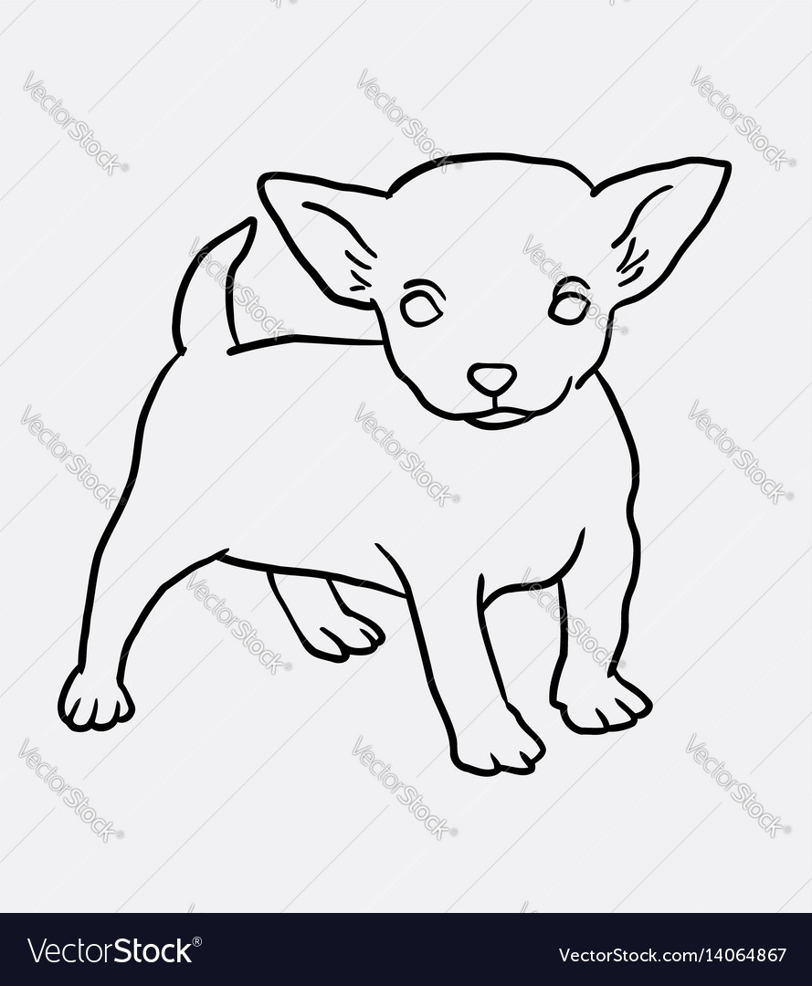 Puppy standing sketch vector image