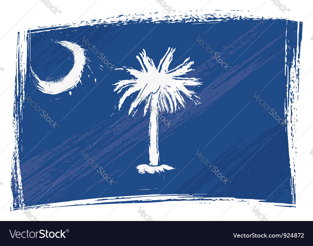 Grunge South Carolina flag vector image
