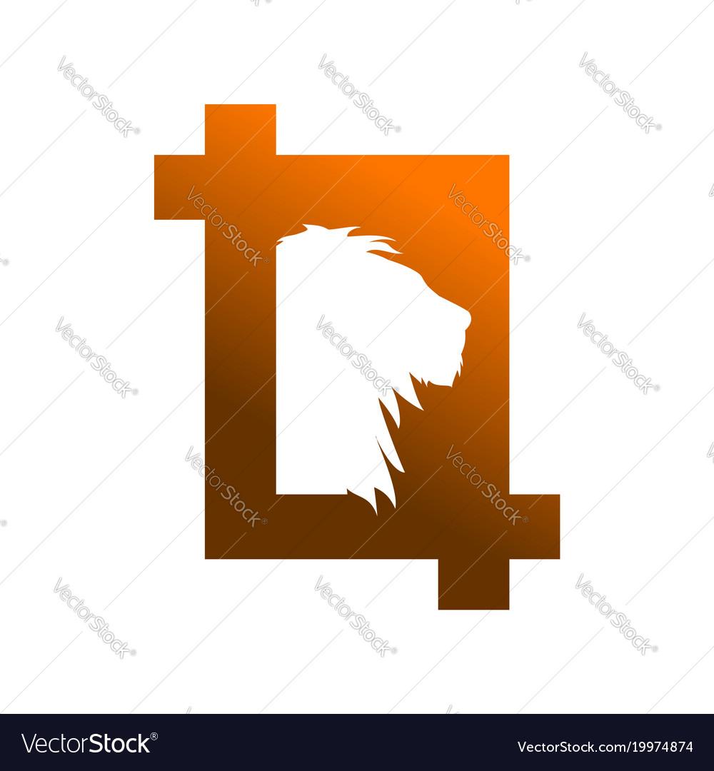 Wild safari photography frame symbol vector image