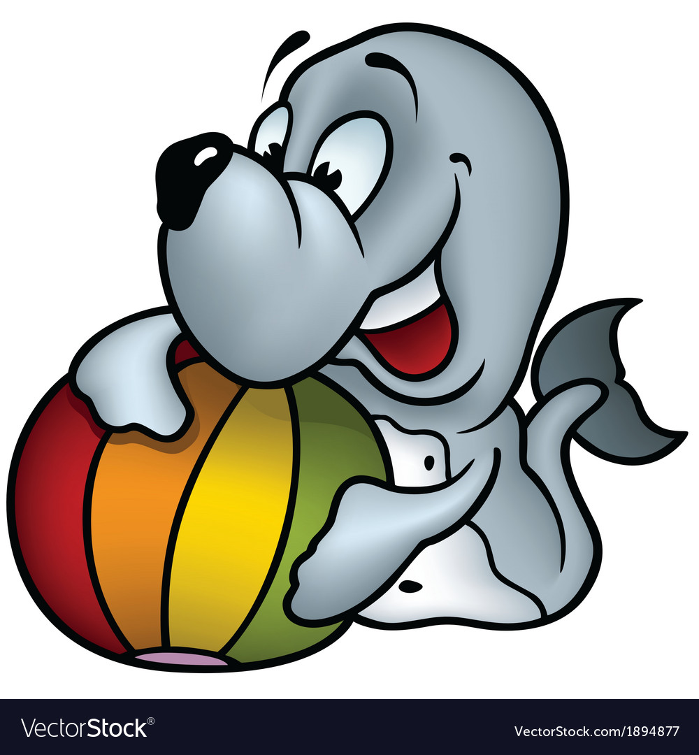 Seal and Ball vector image
