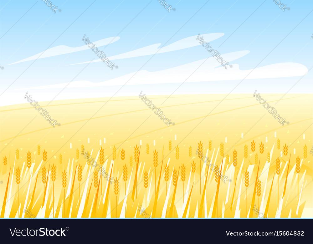 Wheat field landscape vector image