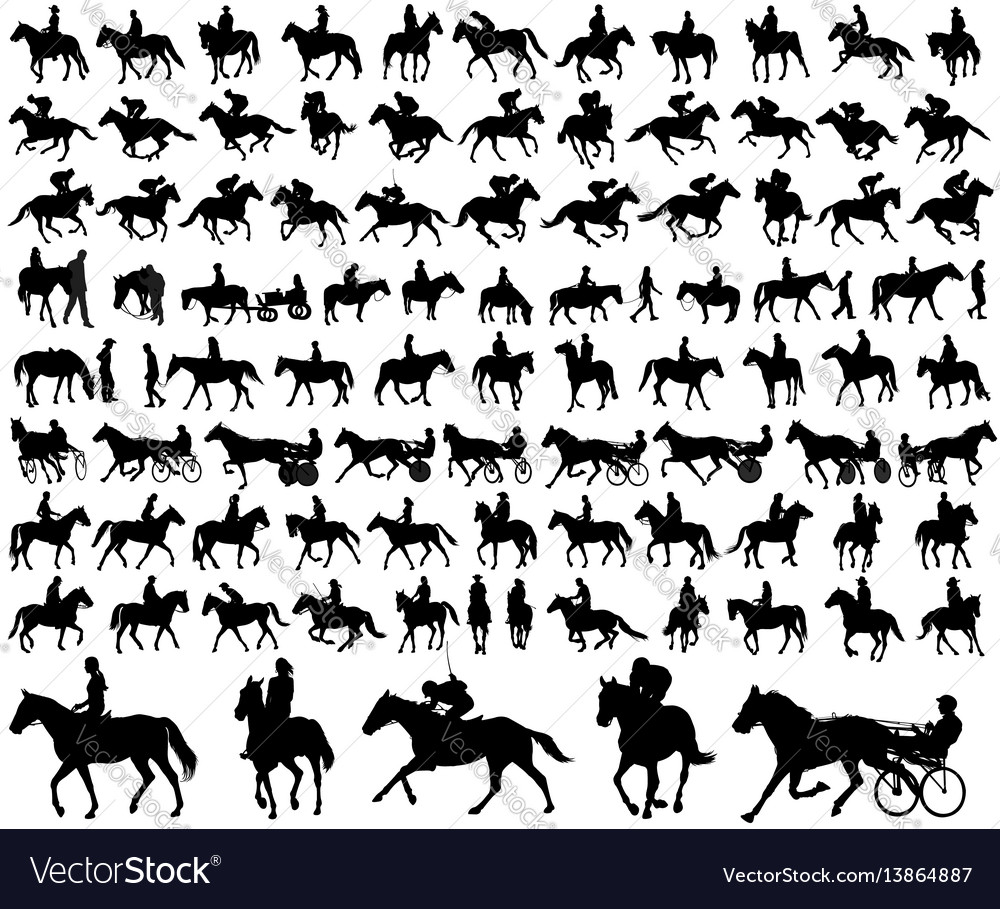Riding horses collection vector image