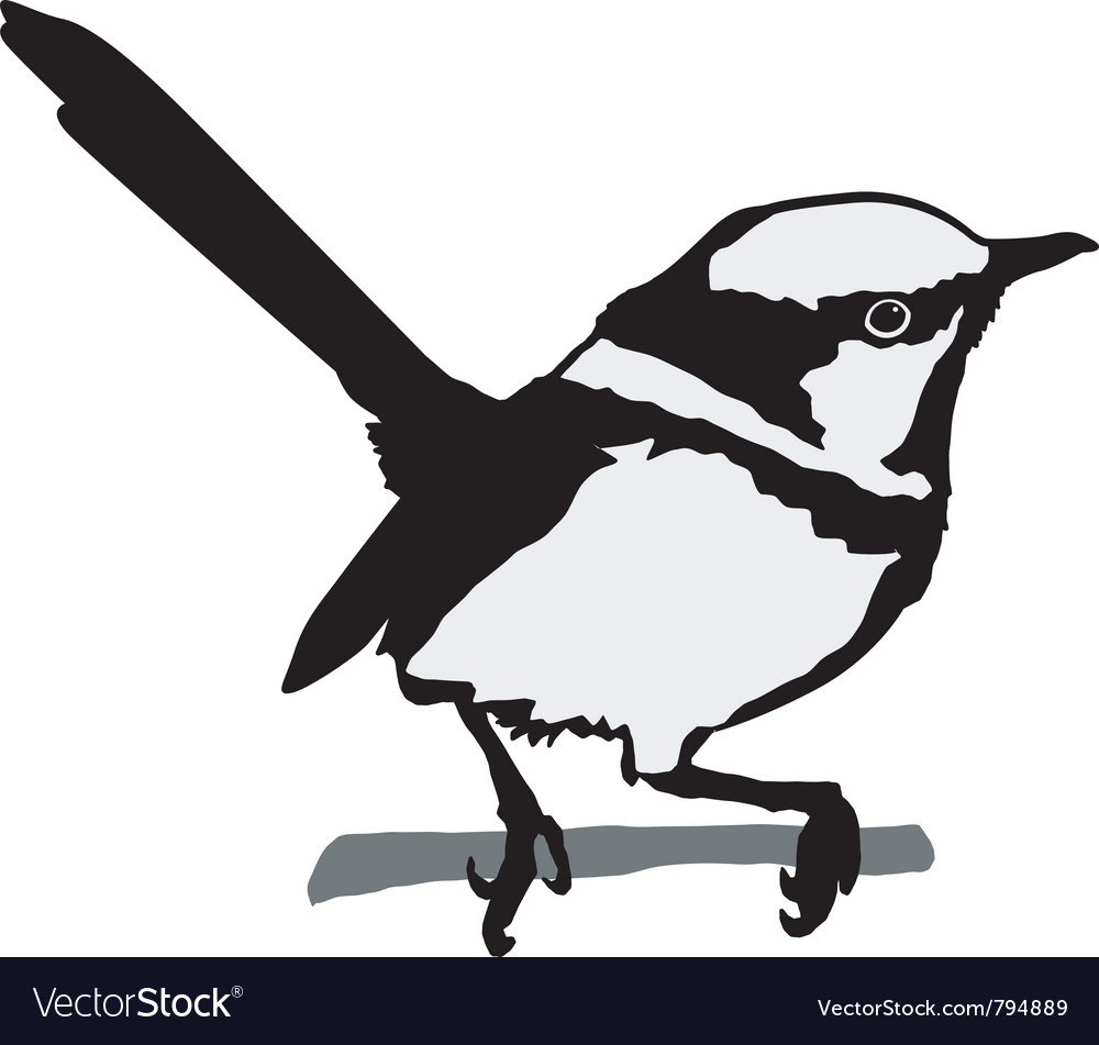 Black silhouette of wren vector image