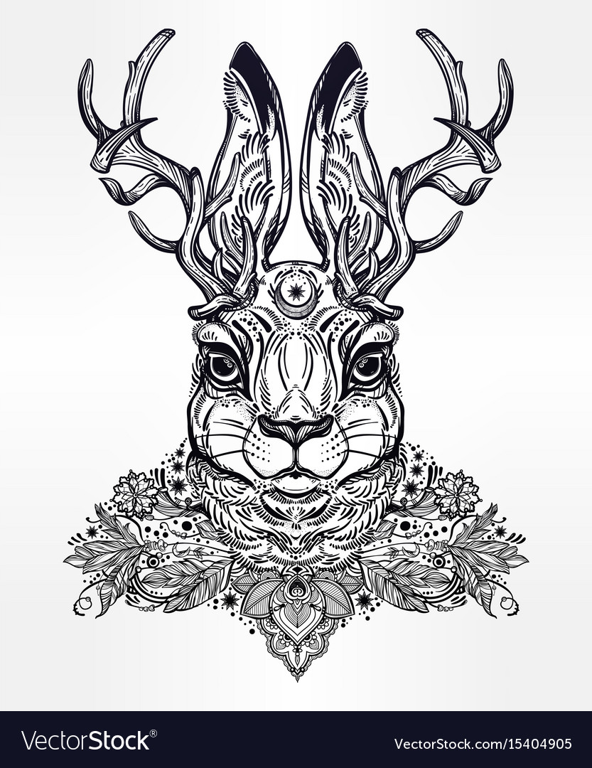 Ornate decorative jacalope magical creature art vector image