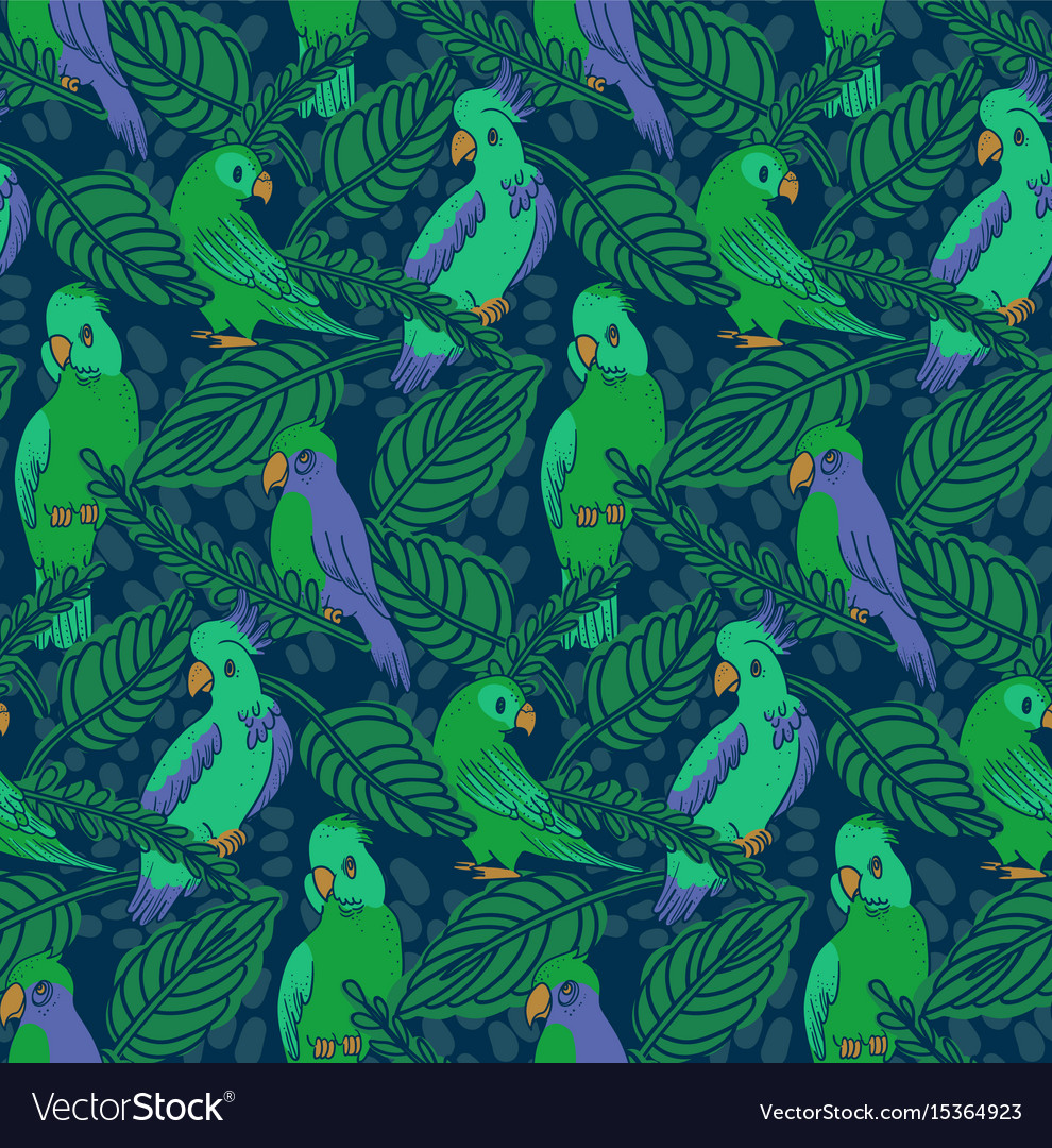 Parrots and cockatoo pattern vector image