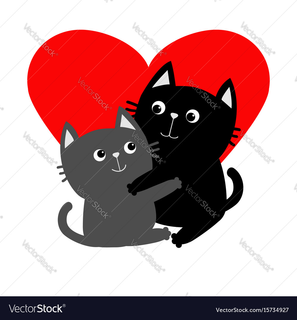 Black gray cat hugging couple family hug vector image