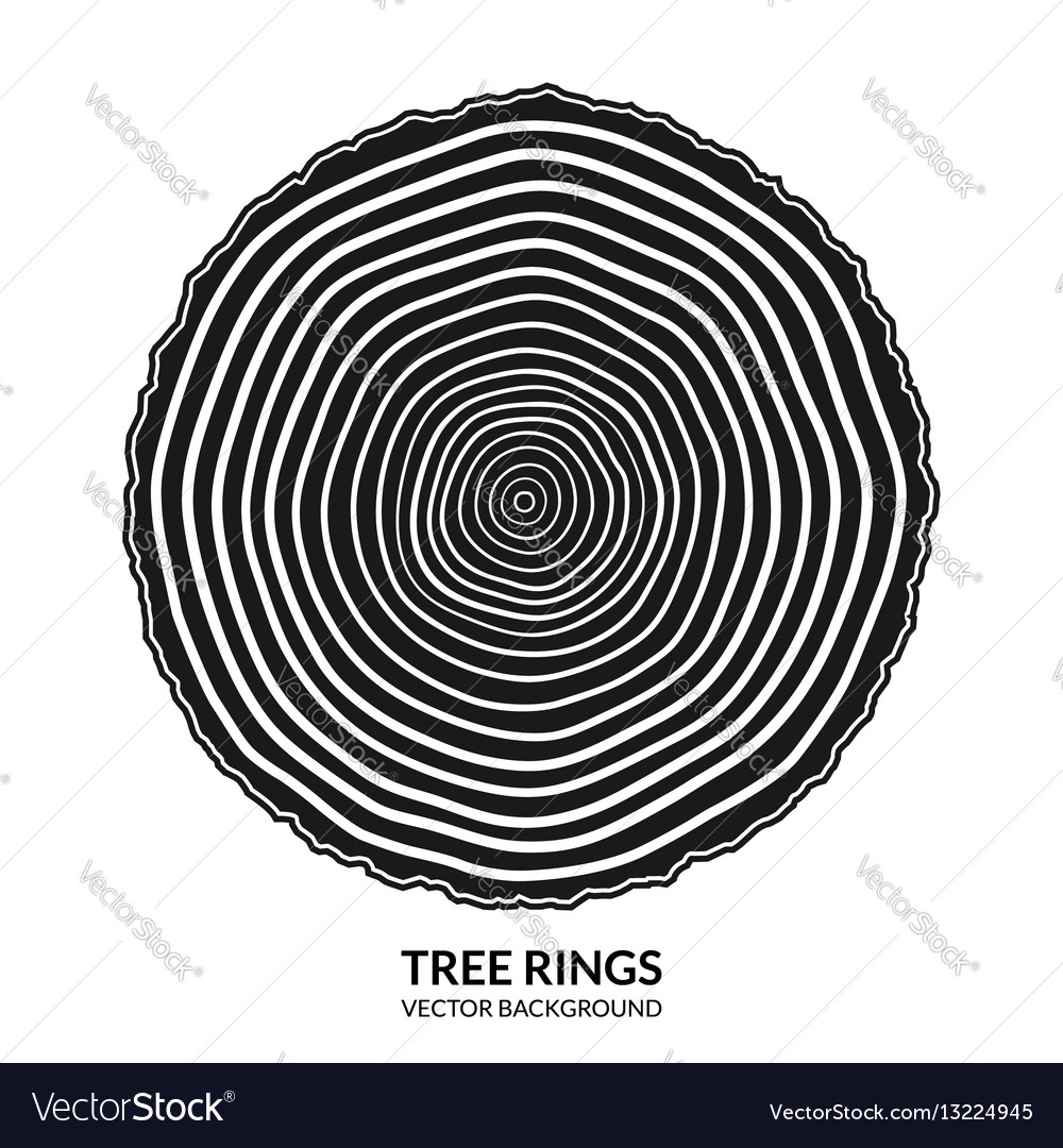 Tree rings and saw cut tree trunk symbol vector image