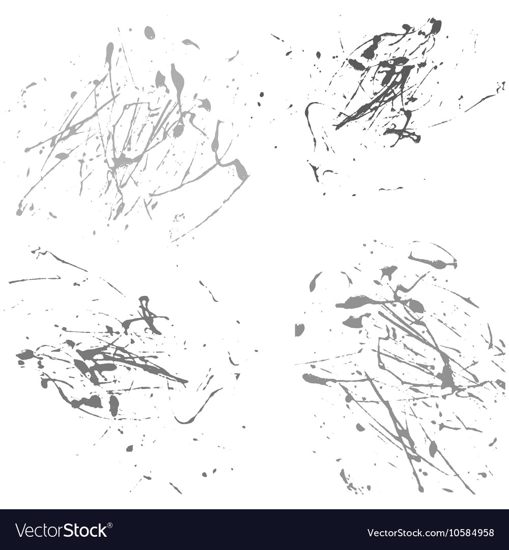Gray splatter paint abstract on white background vector image