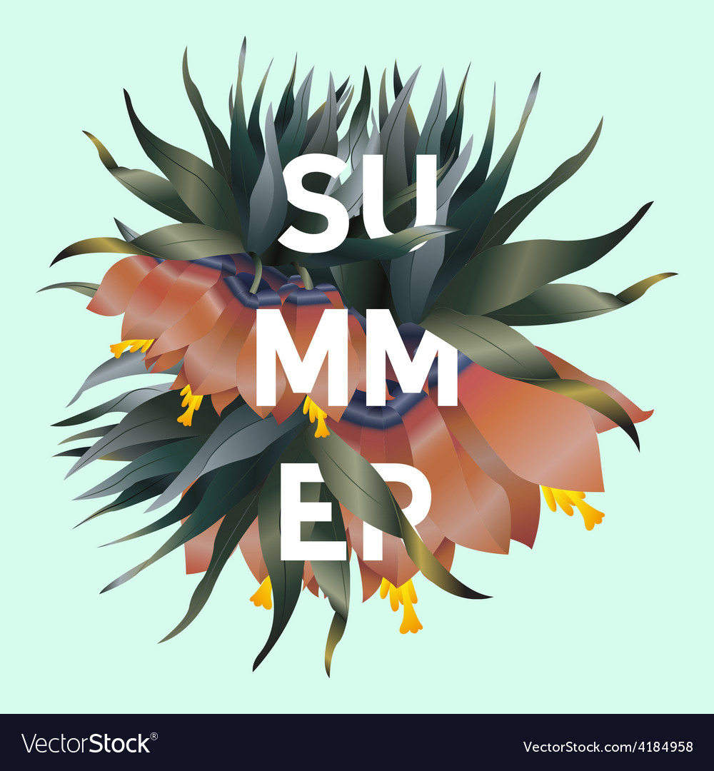 Stylish summer poster vector image