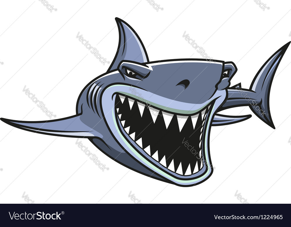 Danger shark attacks vector image