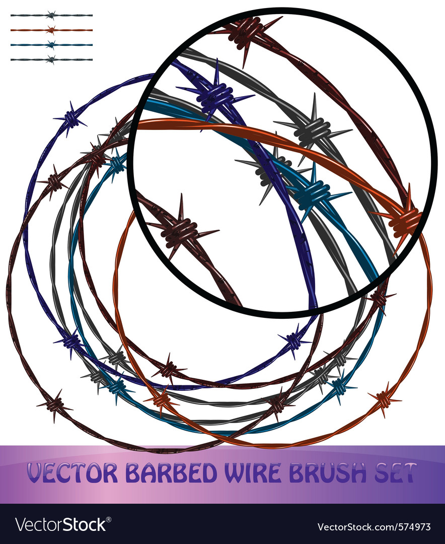 Barbed wire brushes vector image