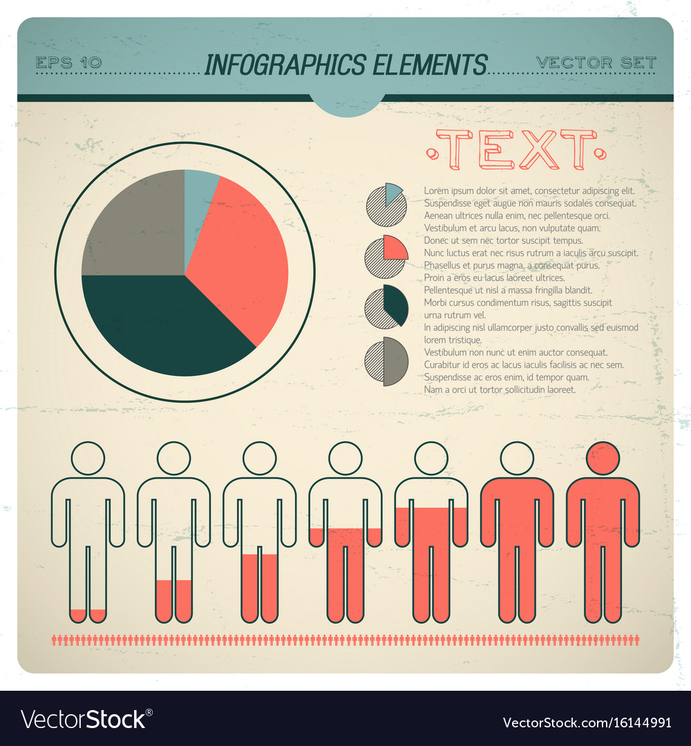 Vintage infographic set vector image