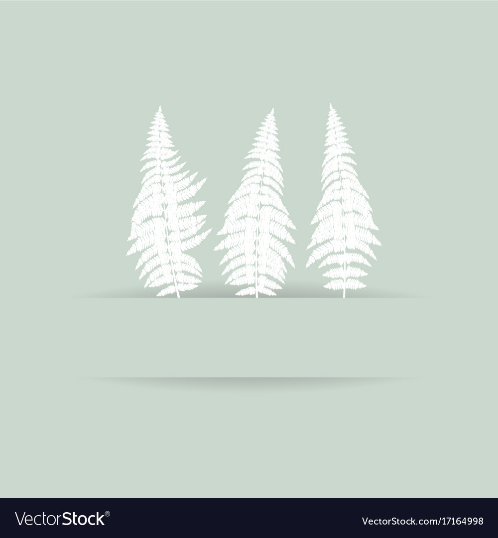 Fern silhouette card vector image