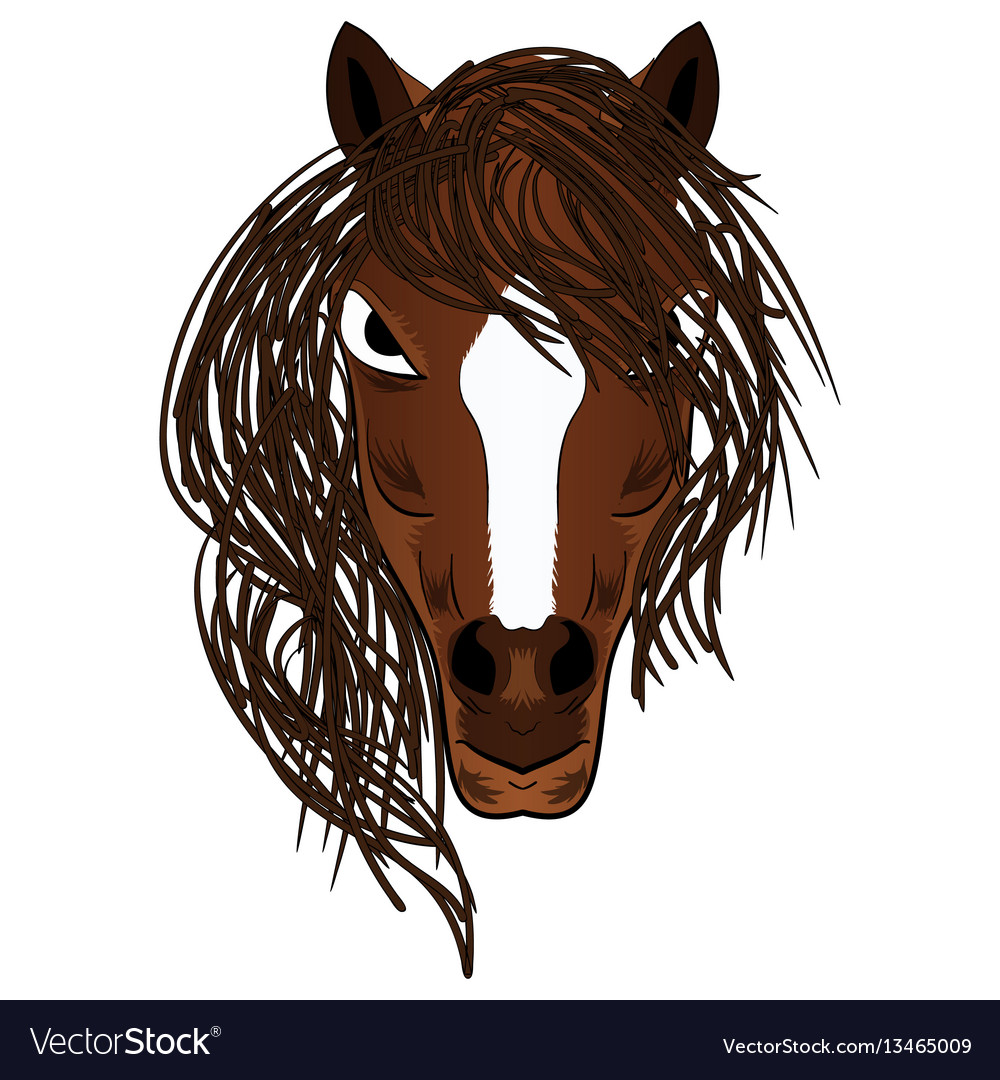 Horse mascot cartoon head vector image