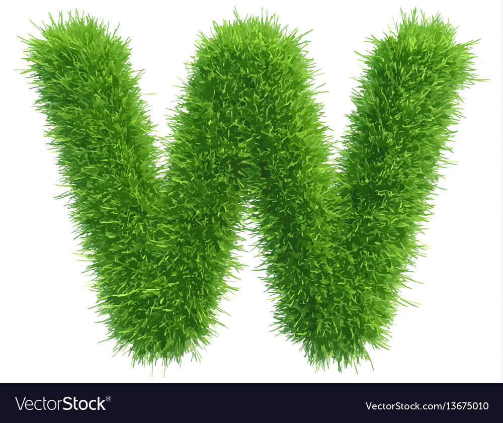 Small grass letter w on white background vector image