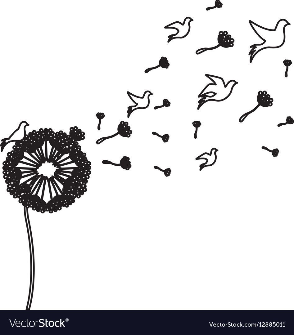 Black silhouette dandelion with fly birds vector image