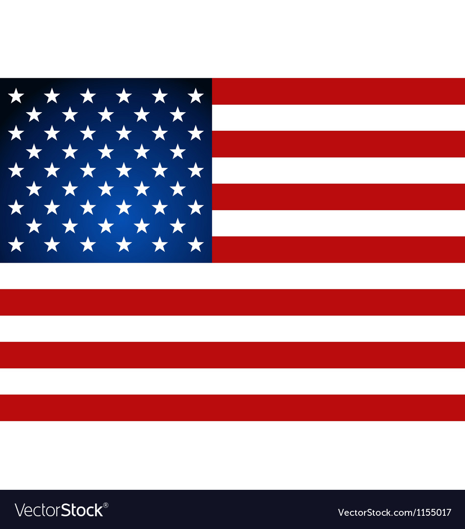 American Flag for Independence Day vector image