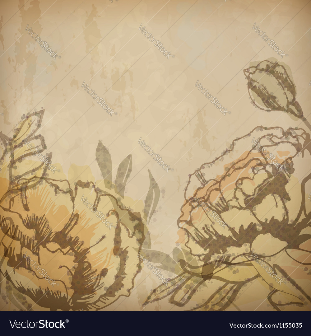 Vintage floral background with flowers drawing vector image