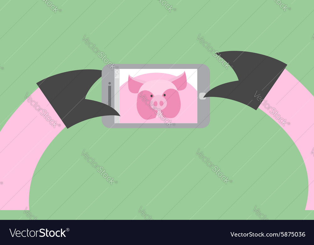 Selfie pig Animal is photographed on phone vector image