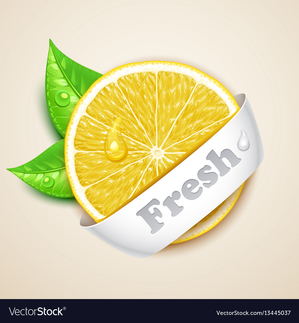 Fresh lemon vector image