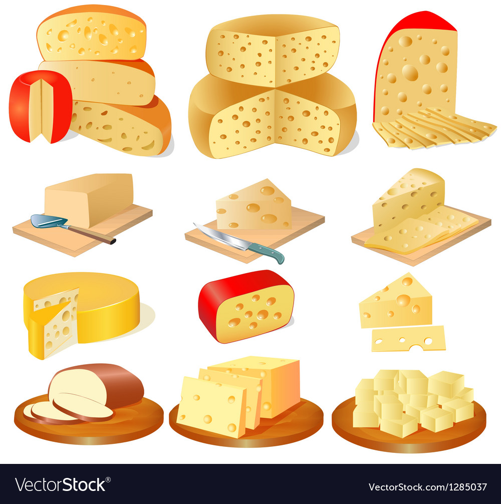 Set Of Different Types Of Cheese Royalty Free Vector Image