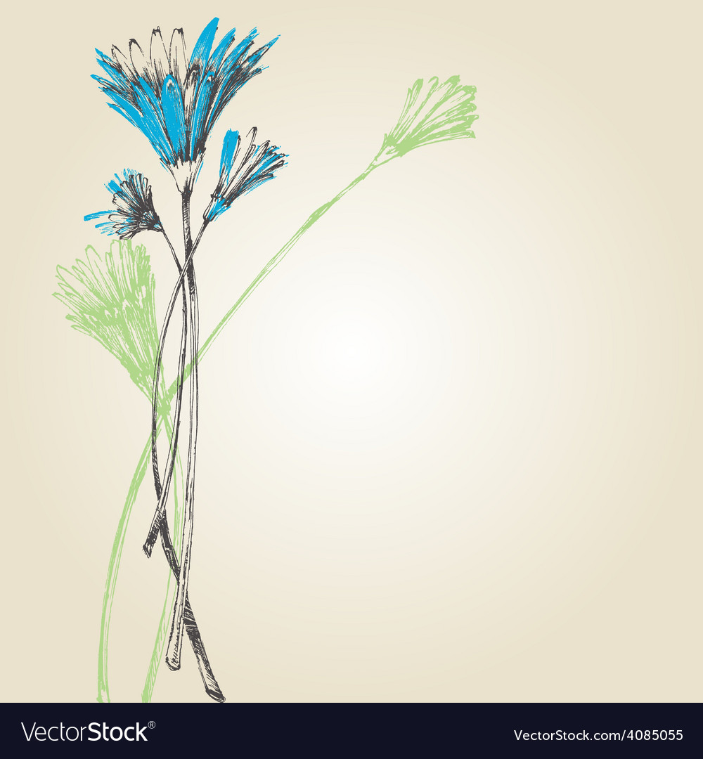 Cute spring flowers background vector image