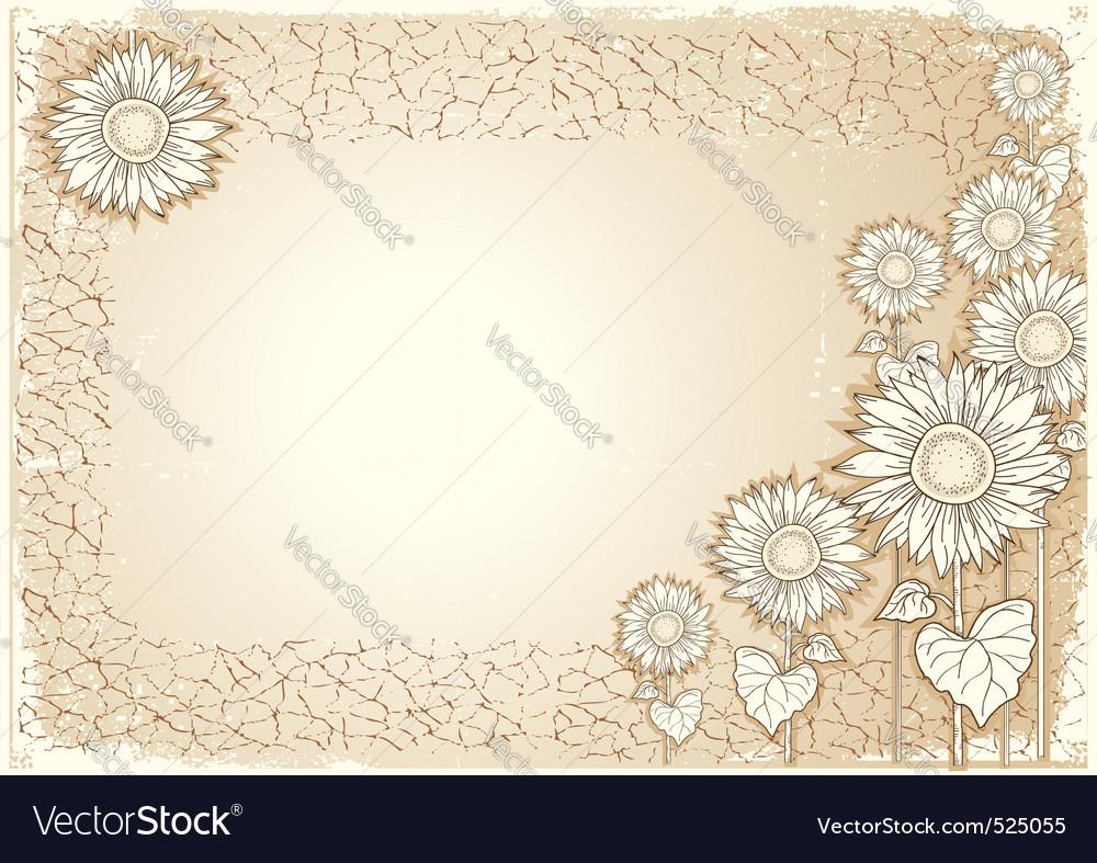Vintage sunflower postcard vector image
