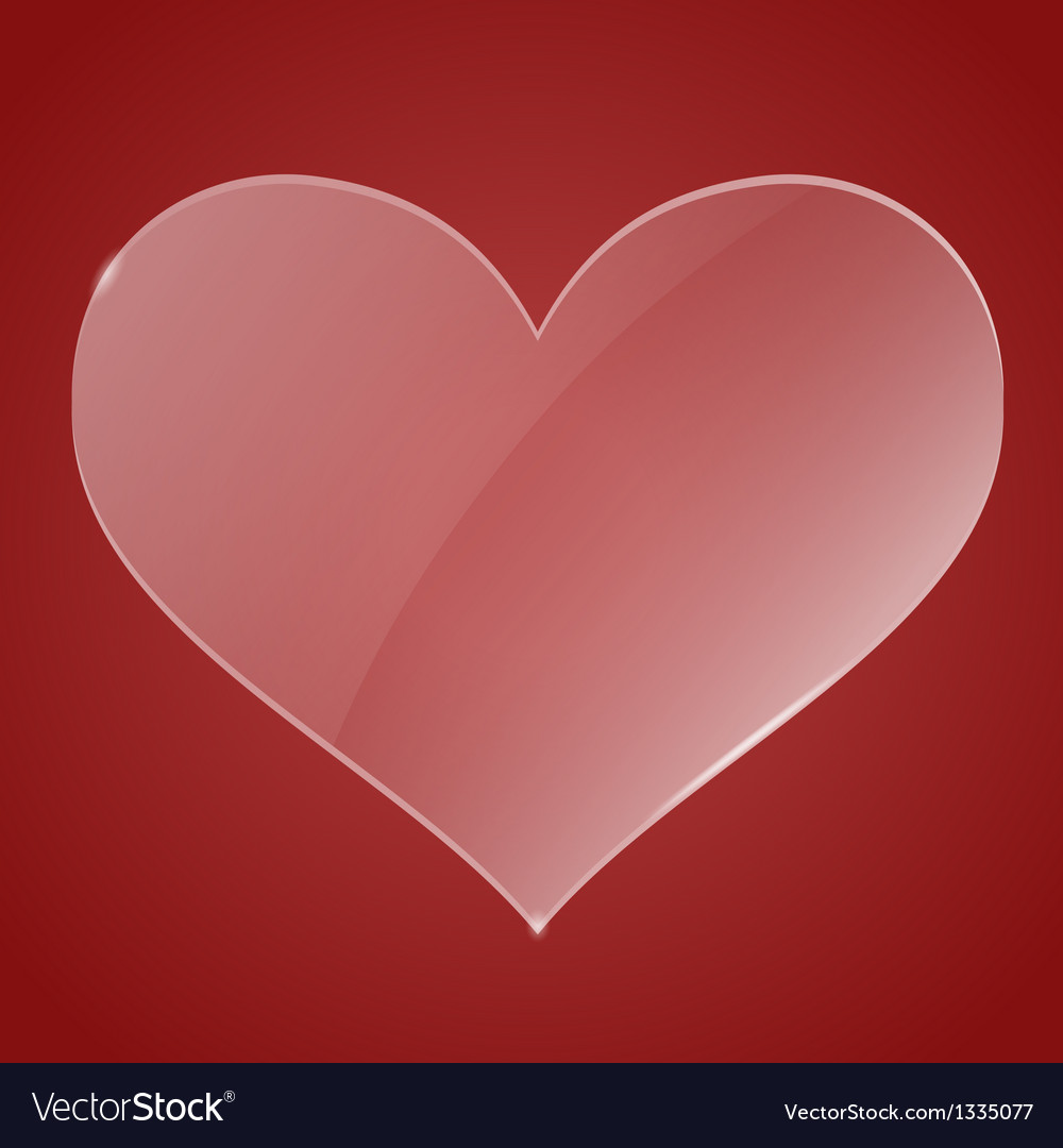 Glass heart vector image