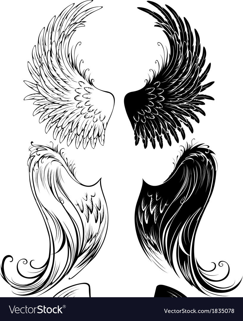 Stylized angel wings vector image